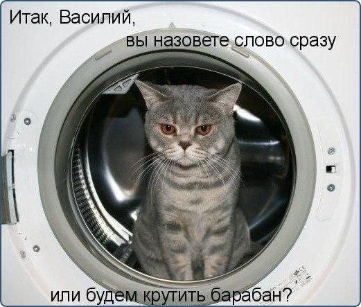Василий,ваш выбор!