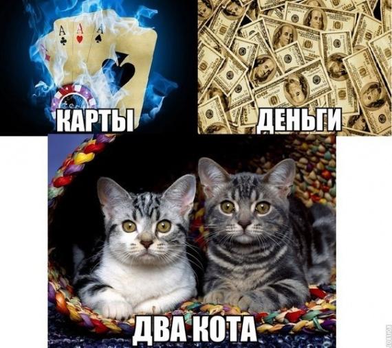 Карты,деньги ...