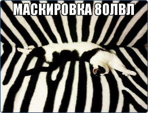 Маскировка 80 lvl