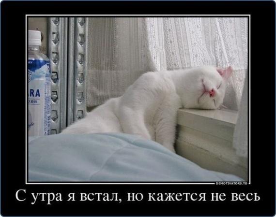 С утра встал