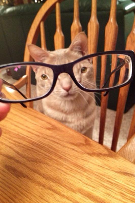 С этими очками я выгляжу странно ?