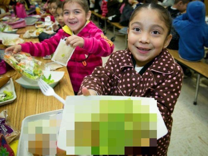 Скандал из-за питания венгерских школьников (14 фото)