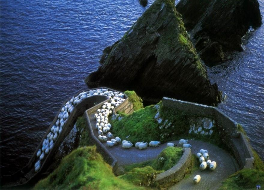 Удивительная Ирландия (21 фото)