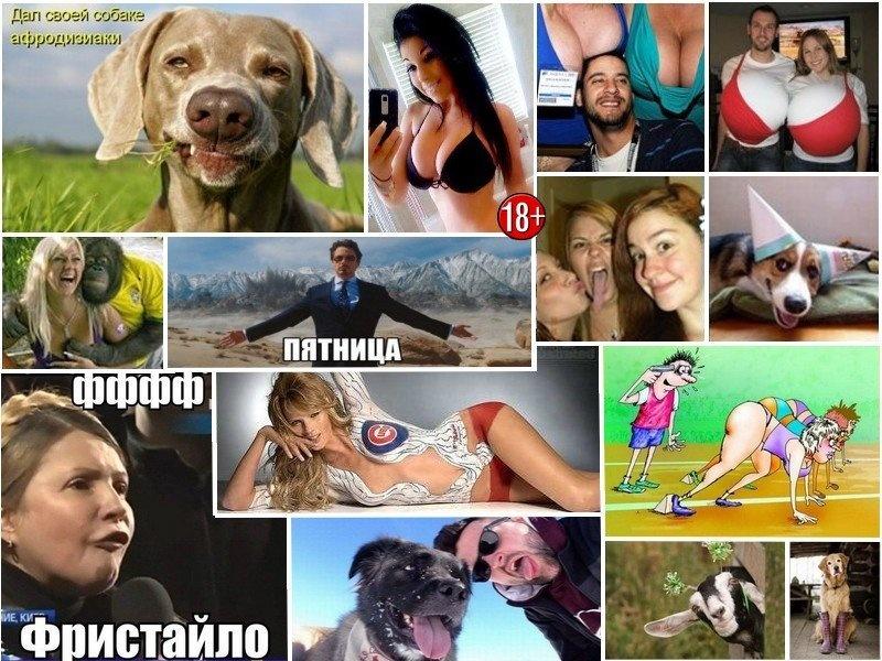 DrunkCow.net - сайт приколов, юмора и хорошего настроения