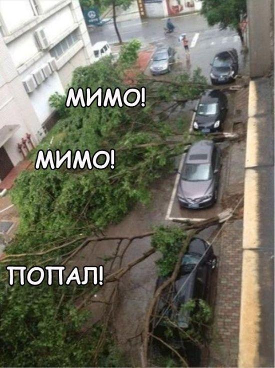 Прикольные картинки (98 фото) 11.06.2014