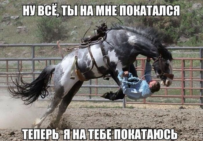 Смешные картинки (46 фото)