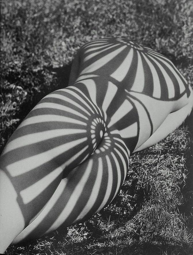 Одетые в тень (21 фото) 18+