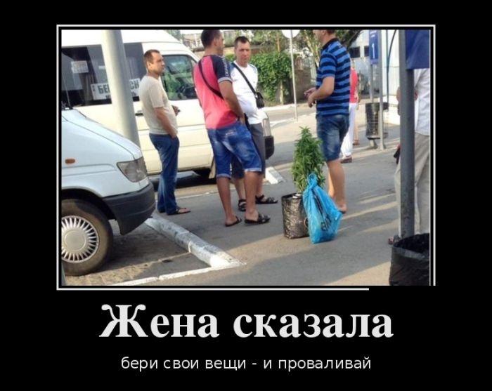 Демотиваторы (30 фото) 19.06.2014