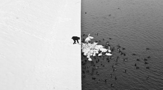 Природный минимализм