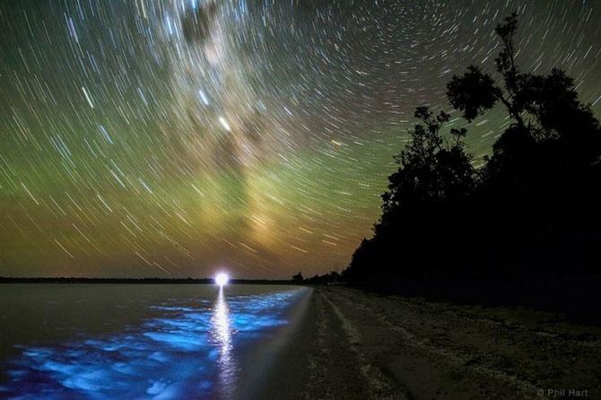 Победители фотоконкурса «Земля и небо» (11 фото)