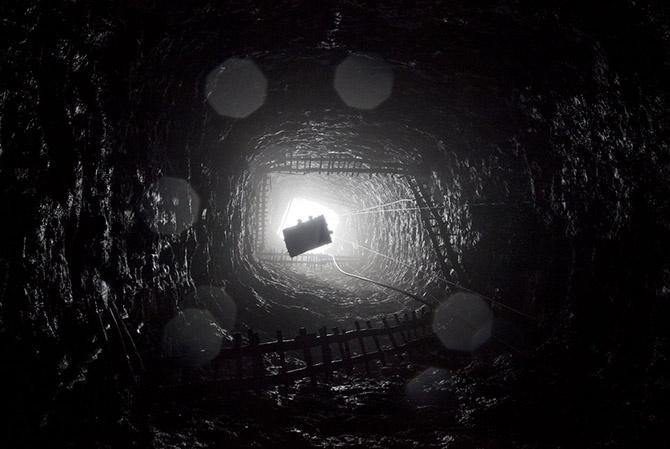Уголь — древнее растение под землей