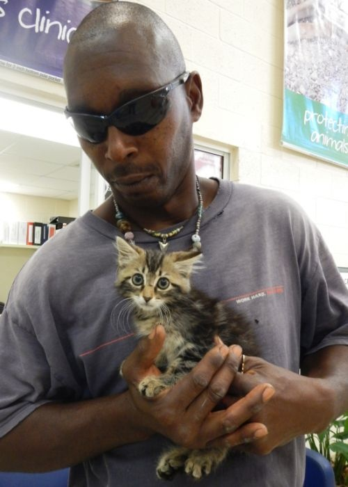 Разрезал свой новый пикап, ради спасения котенка (3 фото)