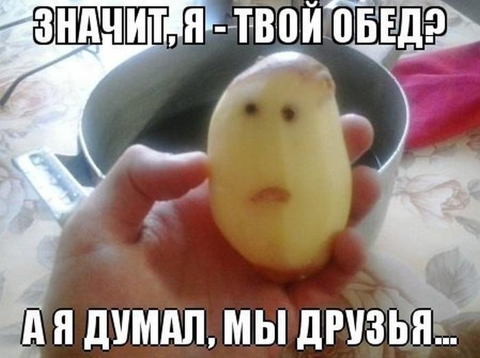 Смешные картинки (130 фото) 27.06.2014