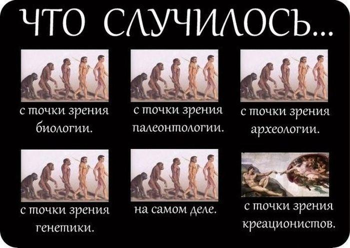 Прикольные картинки (135 фото) 30.06.2014