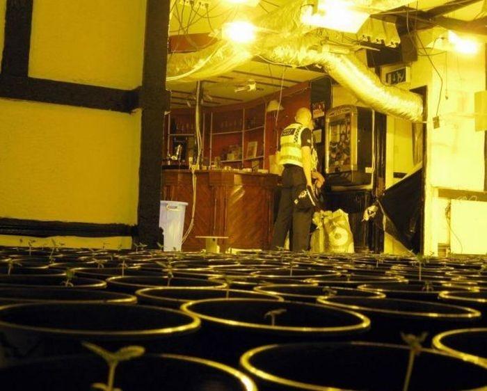 Находка в здании заброшенного ночного клуба
