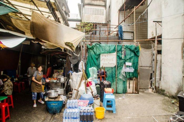 Необычные обитатели заброшенного торгового центра (15 фото)