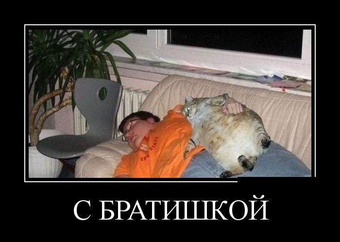 Демотиваторы (30 фото) 01.07.2014