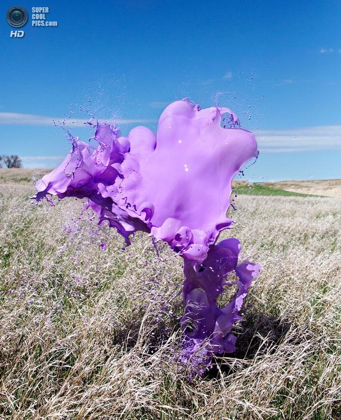 Жидкие скульптуры-всплески