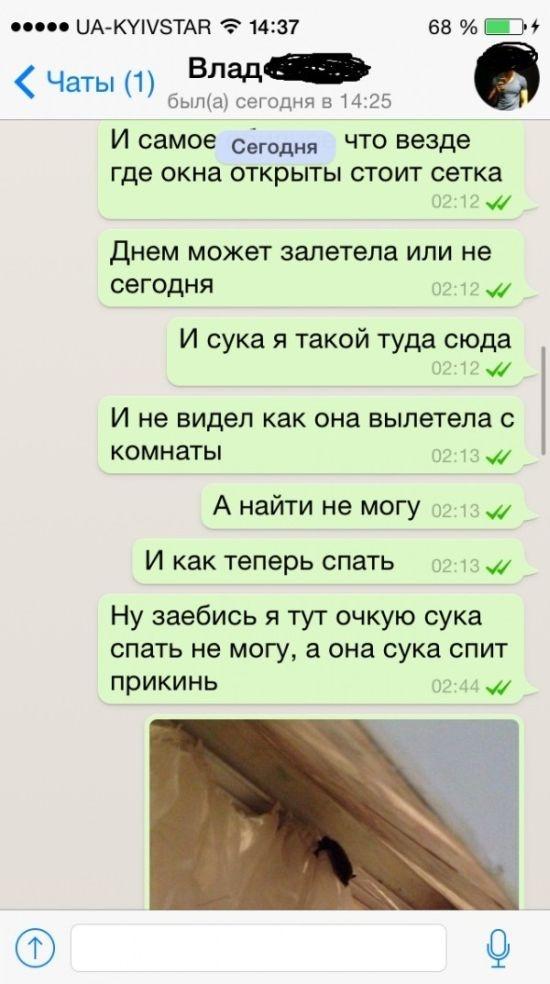 """""""Ночные приключения"""" (7 фото)"""
