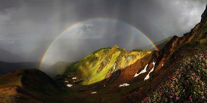 29 лучших снимков с фестиваля дикой природы России