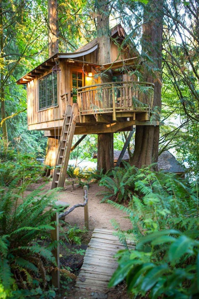 Идеальные дома на деревьях (20 фото)