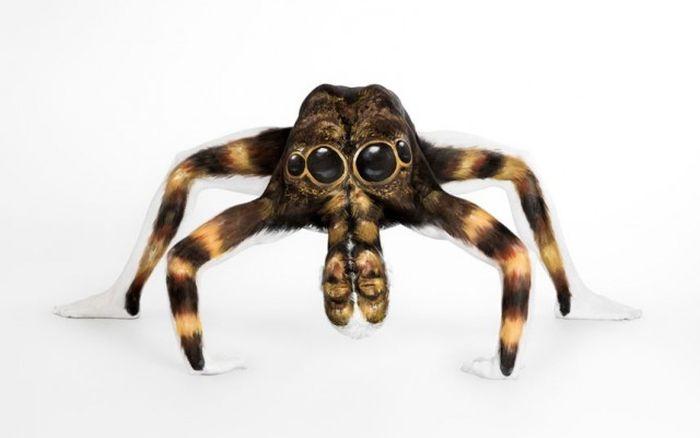 Девушка превращается в гигантского тарантула при помощи красок (6 фото)