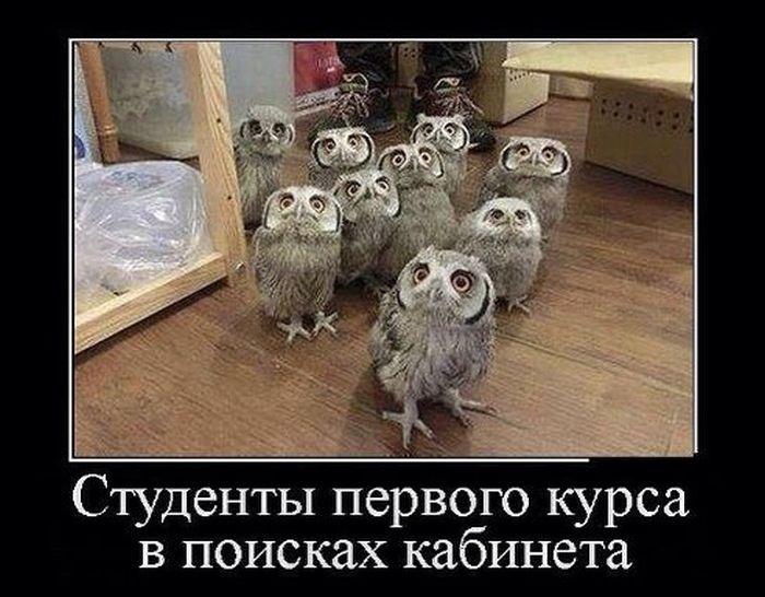 Демотиваторы (30 фото) 29.07.2014