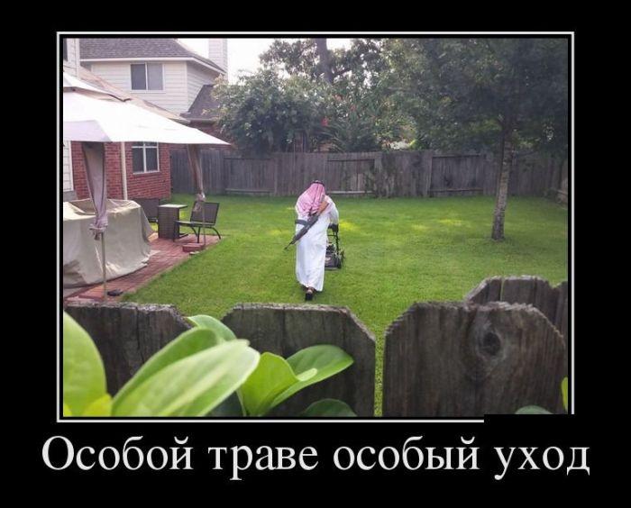 Демотиваторы (30 фото) 30.07.2014
