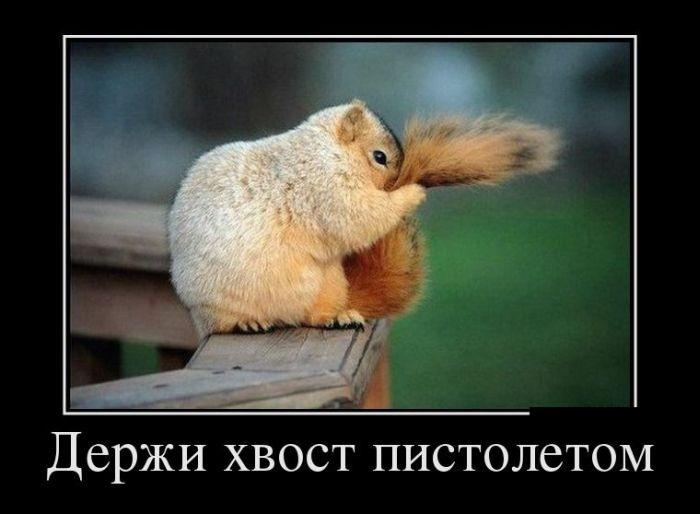 Демотиваторы (30 фото) 05.08.2014