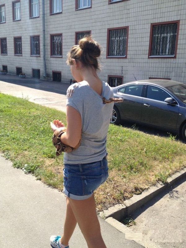 На прогулке с необычным домашним питомцем (2 фото)