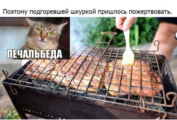 Готовим свиные рёбрышки на барбекю (26 фото)