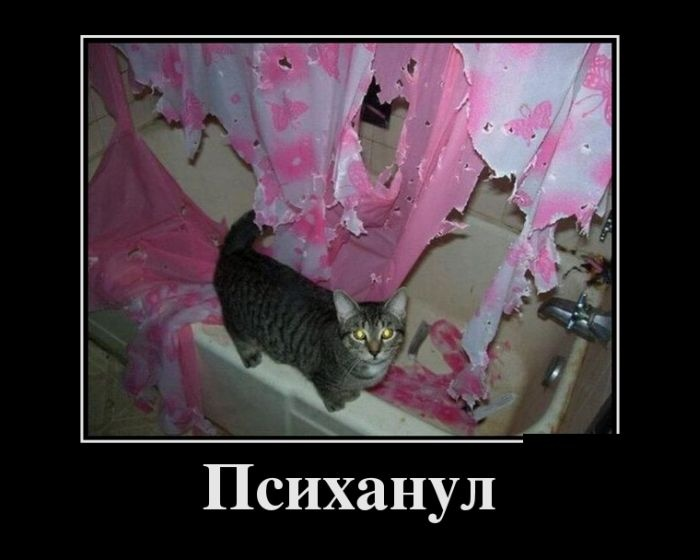 Демотиваторы (30 фото) 13.08.2014