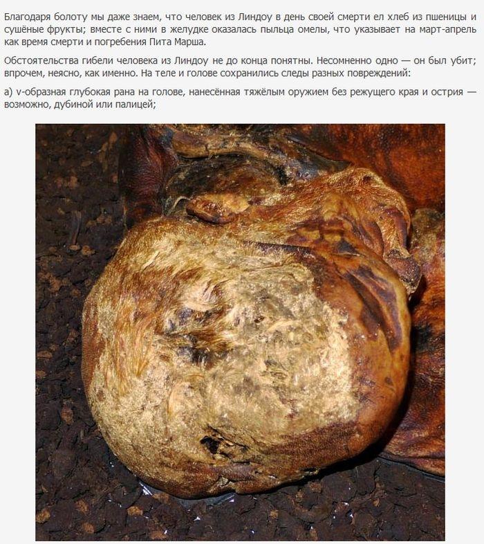 Болотные мумии (22 фото)