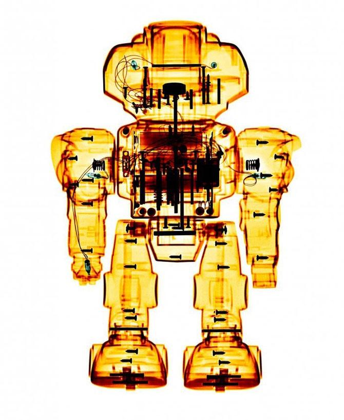 Рентгеновские снимки игрушек (11 фото)