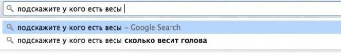 Нелепые запросы в поисковых системах (25 фото)