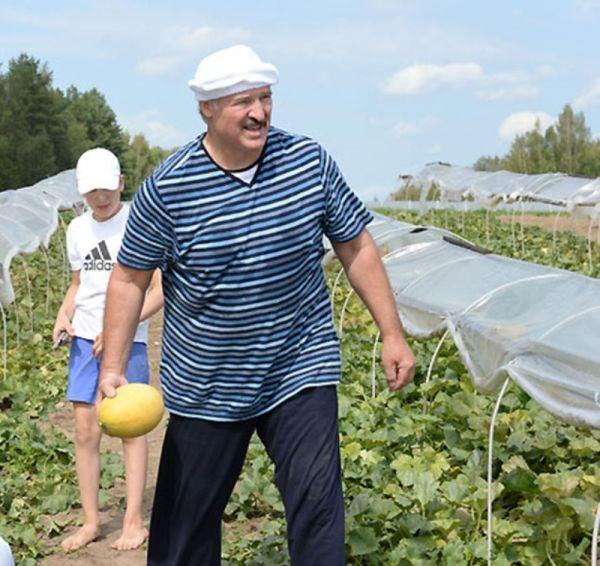Прикольные картинки (122 фото) 25.08.2014