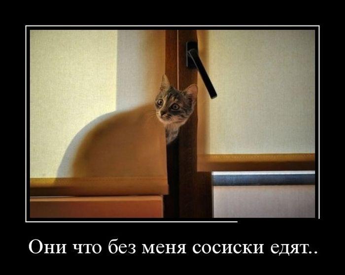 Демотиваторы (30 фото) 26.08.2014