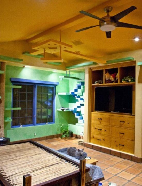 Когда коты порабощают дом (8 фото)