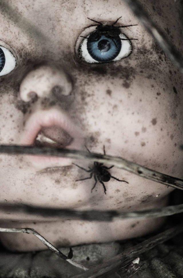 Страшные картинки со всего мира (33 фото)