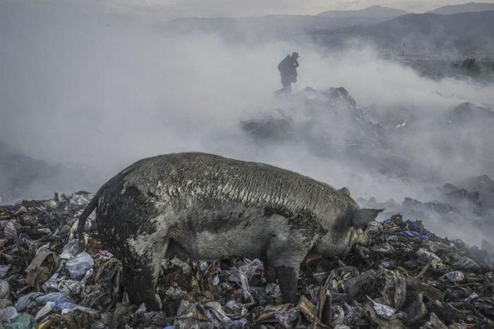 Жизнь людей на гигантской свалке в Гаити