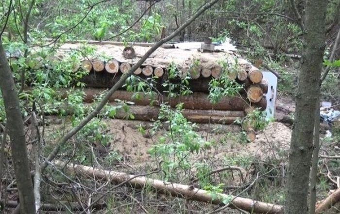 Планы пережить апокалипсис в лесу сорвались из-за затопления землянки