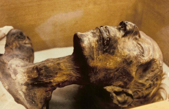 Интригующие находки, обнаруженные внутри мумий