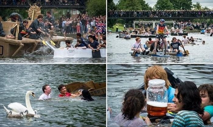 Гонка студентов Кембриджа на лодках из картона