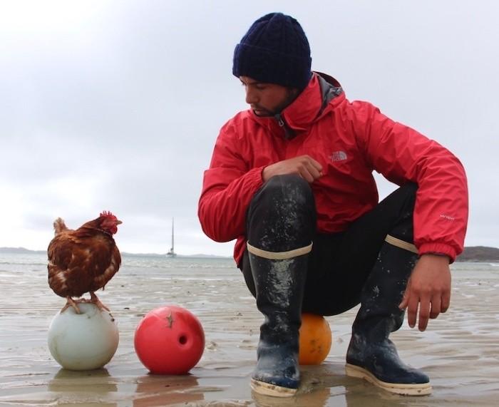 24-летний француз путешествует на яхте в компании курицы
