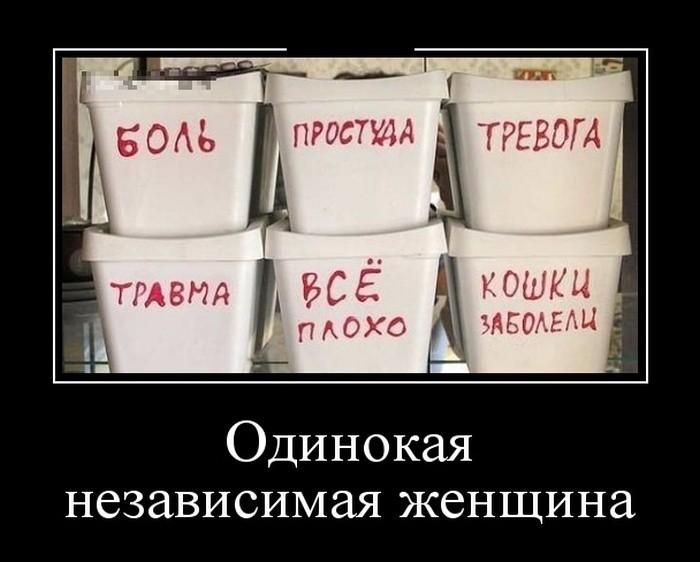 Демотиваторы (30 фото) 21.06.2016
