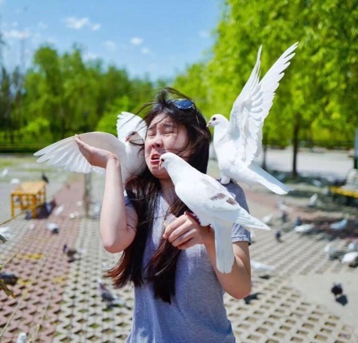 Неудачная фотосессия с голубями