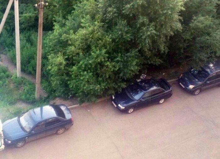 Нравоучение автомобилисту от заботливых соседей