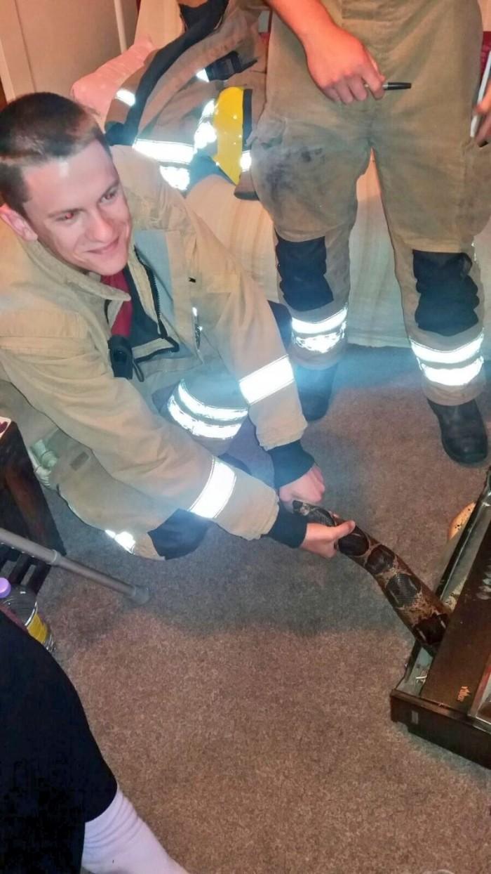 Спасатели вытащили из газового обогревателя 2,5-метрового удава