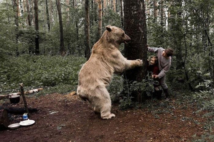 Фотосессия семьи дрессировщика Юрия Пантелеенко с ручным медведем Степаном Интересное