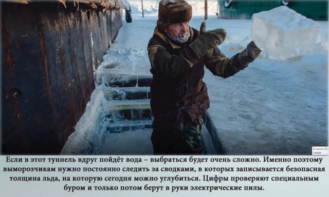 Как вымораживают суда в якутском поселке Жатай